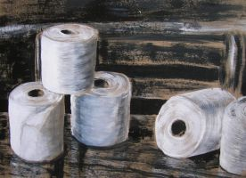 Toilet Paper Rolls by Theophilia