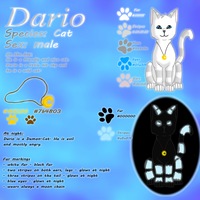 Dario by Kariotic