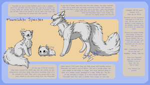 Flauschkin Species Sheet by Dreqqy