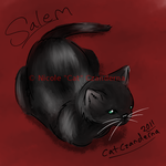 Salem Painting by CatopumaBadia