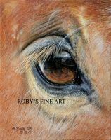 'Self Portrait' - Realism by robybaer