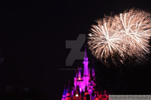 Wishes at the Magic Kingdom by LachlanRobFrags