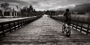 Bicyclist by kpavlis