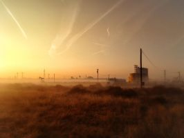 Early Morning by zootnik