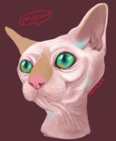Meow by Merimutt