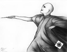 Voldemort The Merc without a Nose by JupiterGrace