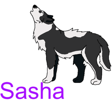Sasha Request by RavensGrrl