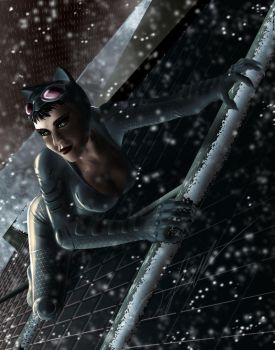 Catwoman by Steelbred