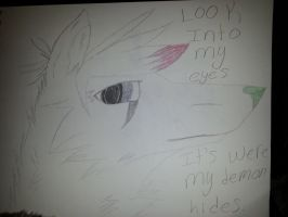 Look into my eyes. its whre my demon hides. by Noragamiii