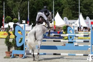 3DE Show Jumping Phase Stock 111 - Takeoff Back by LuDa-Stock