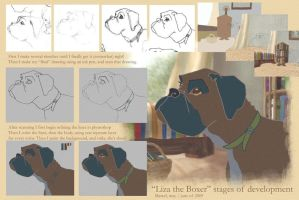 How To create Liza the Boxer by marceldesign