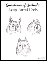Long-Eared Owls of Ga'hoole by Spectra-Sky