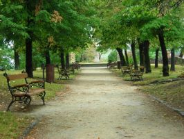 Park path by Mithgariel-stock