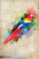 Colorfull Parrot by jeprie