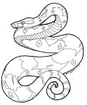 Boa Constrictor Line Art 2 by mrinx