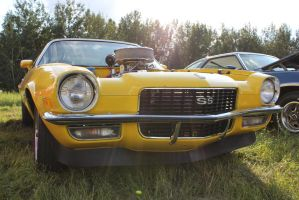 Yellow Beast by KyleAndTheClassics
