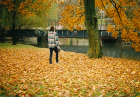 Leaves: They Fall by Ellesh
