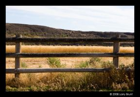 Field and Fence by inessentialstuff