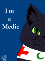Medic by Hawksfeathers97