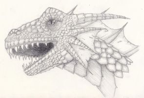 Penciled dragon head by obsessedwithYJ
