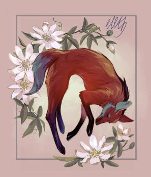 Maned wolf by eleth89