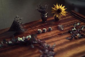 little treasures by Econita
