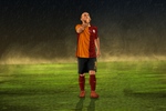 Wesley Sneijder Vector by fimgraphic