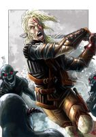 The Witcher 2.... by Ruihq