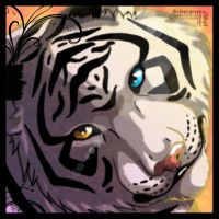 White tiger by Silvergrin-W