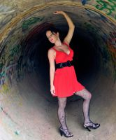 Cheetah - red dress in pipe 2 by wildplaces