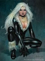Black Cat Commission by PaulAbrams