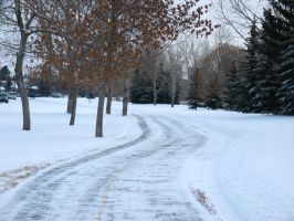 Frozen Path by bluewave-stock