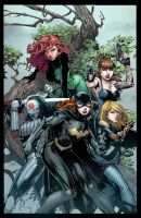 Birds Of Prey BA by FabianCobos
