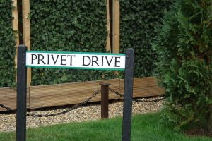 Privert Drive by MissNuttyTree