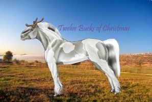 GG- ID#16 SS Twelve Bucks of Christmas by SweetStreamStables