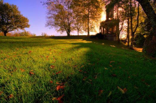 Automne by Gruntter