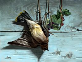 Waxwing study by Mike-Sass