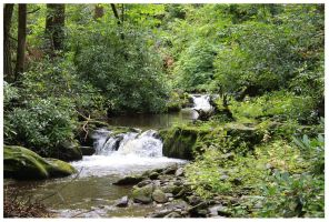 Flowing Creeks and Falls - Parson's Branch - 2013 by CrystalMarine-Arts