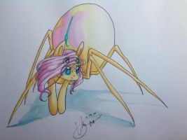 .: Little Spidershy :. by EbonyTails