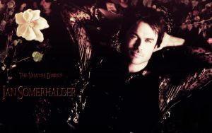 TVD - Ian Somerhalder by Lauren452