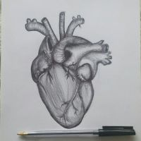 Quick drawing of a heart. by illegalillustrations