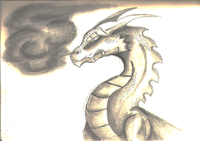 pencil dragon by Myth-Dragon