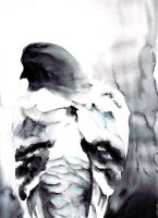 Pigeon in Watercolor by Sunhorde