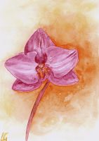 Watercolour Orchid by LilithDarck