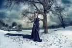 Winter Story by LIVIUMphotography