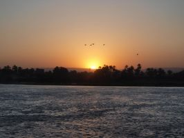Birds over the Nile by rell01
