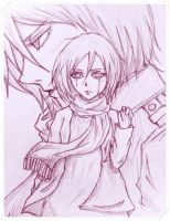 Mikasa Ackerman by quick-witted