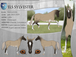 ELS Sylvester by michelle222