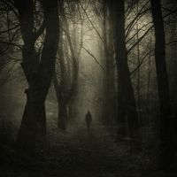 :: The March of Shadows :: by nexion