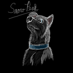 Snowpeak by Colliequest